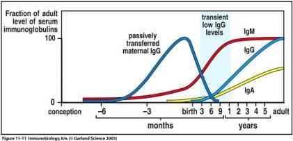 BabyImmunobiology
